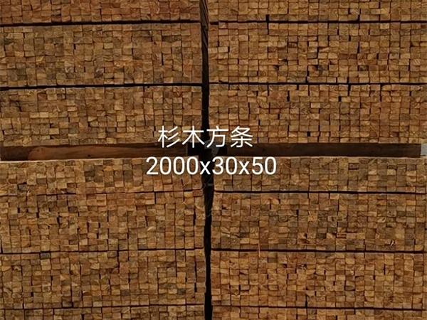 杉木方條2000x30x50
